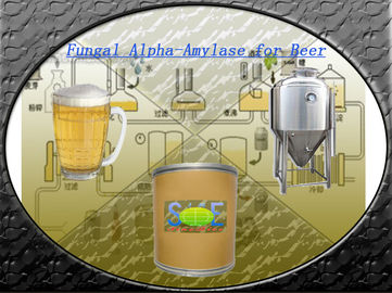 100,000U/G Food Grade Fungal Alpha Amylase Powder For Beer Brewing SINOzym-FAA100BE