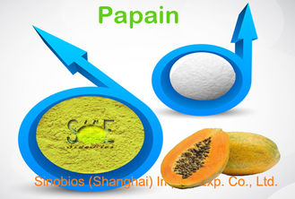 1,000,000U/G Food Grade Papain Enzyme Powder For Brewing Industry Szym-PA1000FO